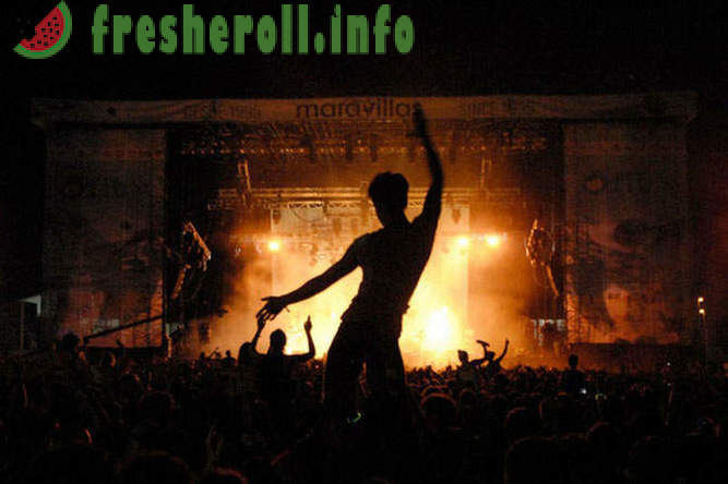 Music festivals this summer not to be missed