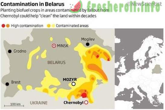 123 facts about Belarus through the eyes of Russians