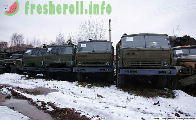 Birches, snow and decommissioned military equipment